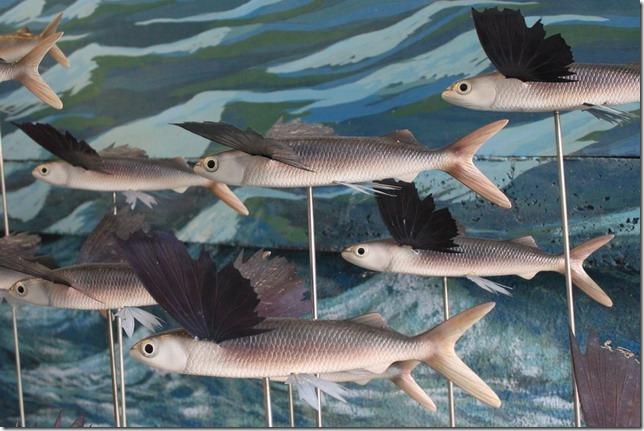 台南-國立台灣歷史博物館-兒童館的自然台灣