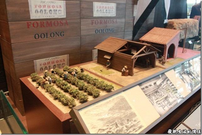 台南-國立台灣歷史博物館。茶葉種植與製茶