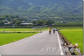 台東縣池上鄉的環圳自行車道。