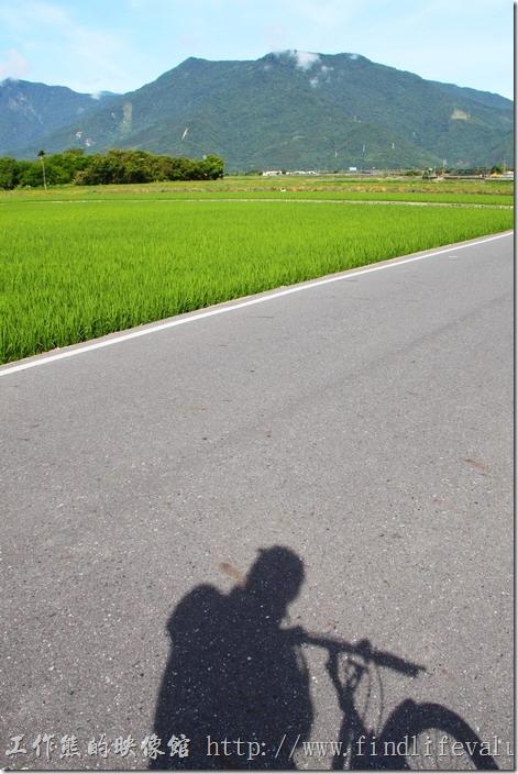 騎乘自行車在台東縣池上鄉一大片的稻田中,讓人有種說部出的舒服,彷彿可以把所有的煩惱拋諸腦後,但要是烈日當空,就要小心中暑了。