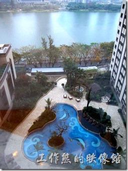 惠州-康帝國際酒店。飯店內有個漂亮的泳池,泳池的地步有棕櫚樹及鯨魚的拼花,可惜沒能看到美女游泳。