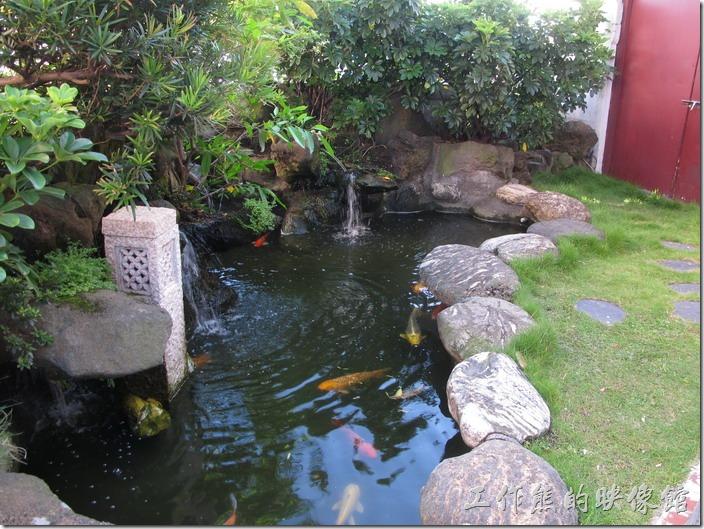 台北凱薩飯店的空中花園,一出來的地方有幾條錦鯉游來游去,這裡比較曬不到太陽,否則可能會被曬暈。