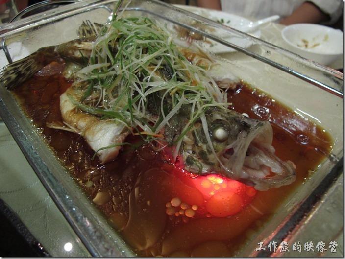 上海-寶島曼波。清蒸桂魚,RMB168。基本上我不太喜歡在上海吃魚,因為上海的魚大多從河裡補上來的,所以泥土味很重,不過這桂魚用清蒸的居然吃不到泥土味,肉質也很細嫩,就是有點貴。