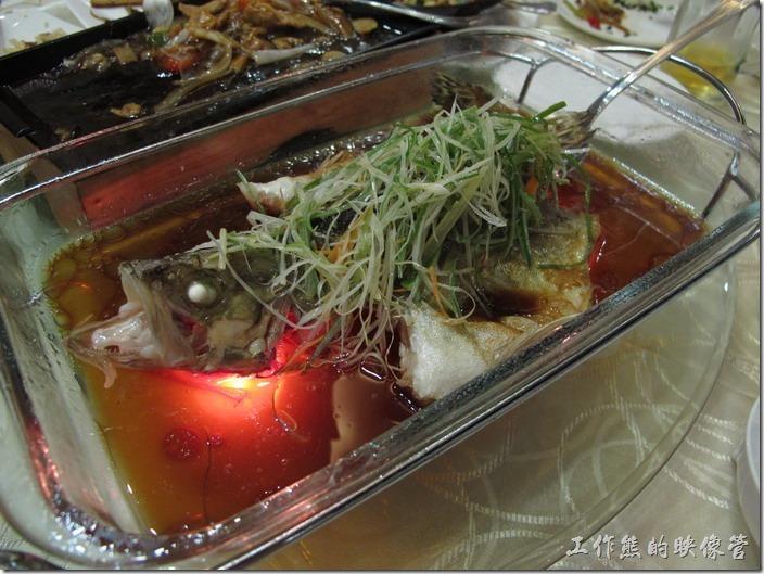 [上海]寶島曼波,台菜餐廳
