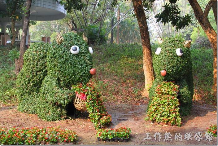 台南-2014中山公園百花祭。這兩隻就比較合乎我對松數的印象了,怎麼沒有在兩隻的中間做個愛心,或是新春字樣~我是不是想太多了。