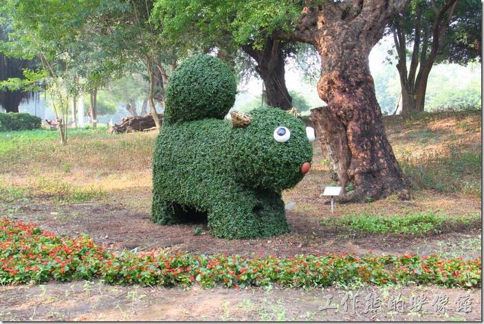 台南-2014中山公園百花祭。這一隻看起來就比較像「松鼠」了,等等!這隻也是圓臉耶,難不成上面那隻也是松鼠,暈倒!怎麼看起來像是長得太胖的松鼠啊。