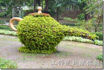 台南-2014中山公園百花祭。機器人 與茶壺。