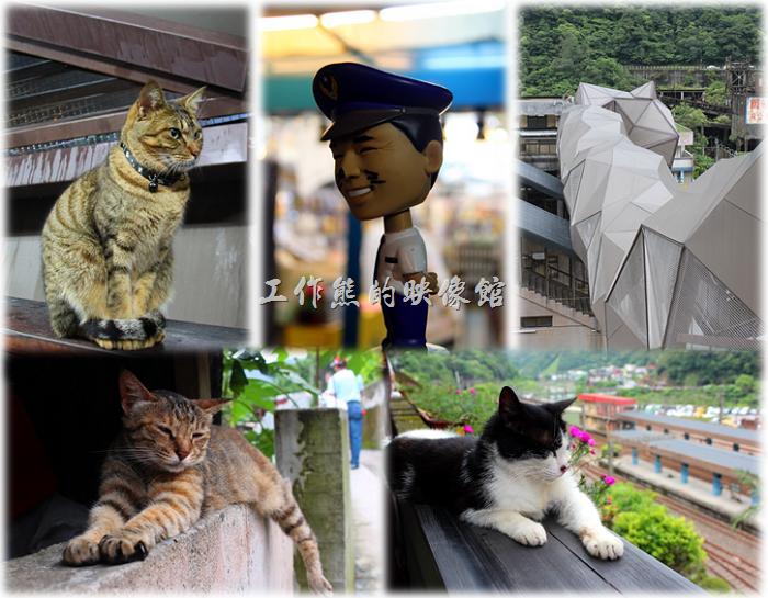 「侯硐」也因為貓咪的聚集,身價一路水漲船高,2013年3月30日還落成了一座行人與貓可以共同通行的「貓造型天橋」,讓這原本沒落的小站鹹魚大翻身,美國CNN還在2013年11月將「侯硐」選為「世界六大賞貓景點」之一。