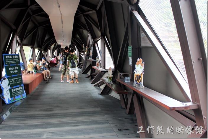 平溪線一日遊-侯硐貓村06