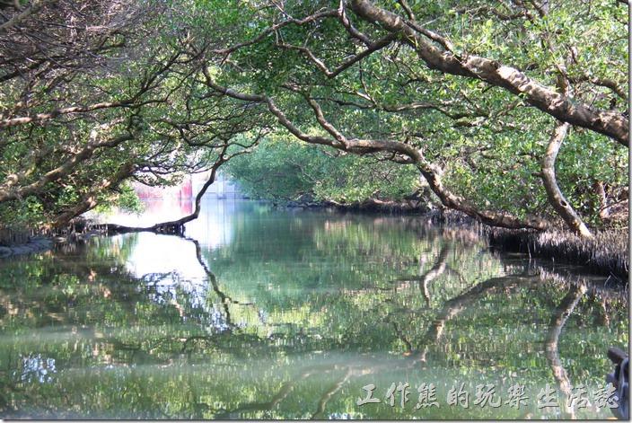 台南-四草竹筏綠色隧道。快到運河的盡頭-水閘門前這個就是【天使之吻】,但是這張照片只能看到左手邊的【天使之吻】而已,因為右手邊有工作船擋住了,水面上的樹幹與水中的倒影形成了類似「人嘴」的影像,左右兩個嘴唇遙相呼應,就像要互相親嘴的模樣。