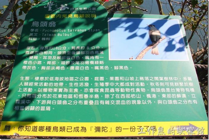 花蓮-理想大地渡假村-豐之谷生態公園(烏頭翁)