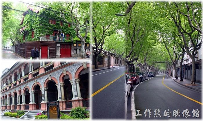 上海的「馬斯南路(現思南路)」是許多老上海人都很熟悉的一條路名,因為在清末民初時這裡原本屬於法租界,所以這裡的建築規定全都是那種三層樓的花園洋房建築,在當時這裡住的可都是有錢或有權的大戶人家!除了建築頗具特色之外,這整條街種的可都是「法國梧桐」。梧桐輕輕搖,月夜繁星老,琴弦輕輕撥,抖落幾許年少~