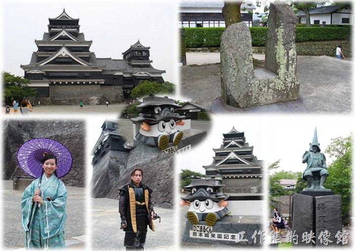 這「熊本城」為日本戰國時代名將「加藤清正」於西元1601年(慶長6年)開始興建,歷時七年的時間才建造完成,城池壯觀堅固,兼具有防禦實用與美觀於一體。可惜在西元1877年(明治10年)西南戰爭前三天由於一場無名火把大小天守閣及「本丸御殿大廣間」燒個精光,期間更受到薩軍的猛烈攻擊,城內多處建築遭到嚴重破壞,整座城池幾乎燒毀殆盡,如今只剩下「宇土櫓」這部份建築躲過了火神的洗禮,成為倖存下來的真正遺跡。