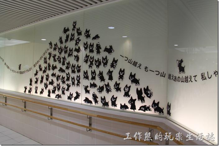 日本北九州-熊本電車。買好了一日乘車卷之後,要經過地下道才會到達搭乘電車的地方,這地下道友好多可愛貓咪的圖案。