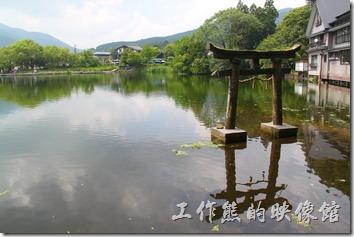 日本北九州自由行-金鱗湖