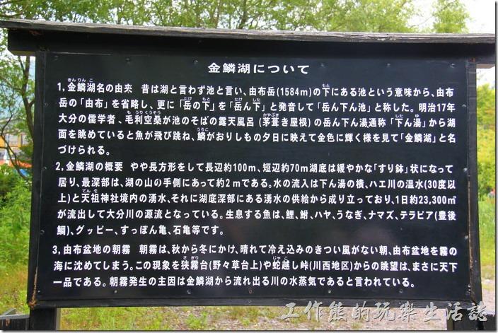 日本北九州-金鱗湖的由來是因湖面跳躍魚群的魚鱗,在夕陽餘暉的反射下,閃耀著金色光芒而得名。其實以日本人的個性來說,湖不在大小,而在其心境及姿態,所以既使只是一座小小的湖泊也可以成為一大名勝。
