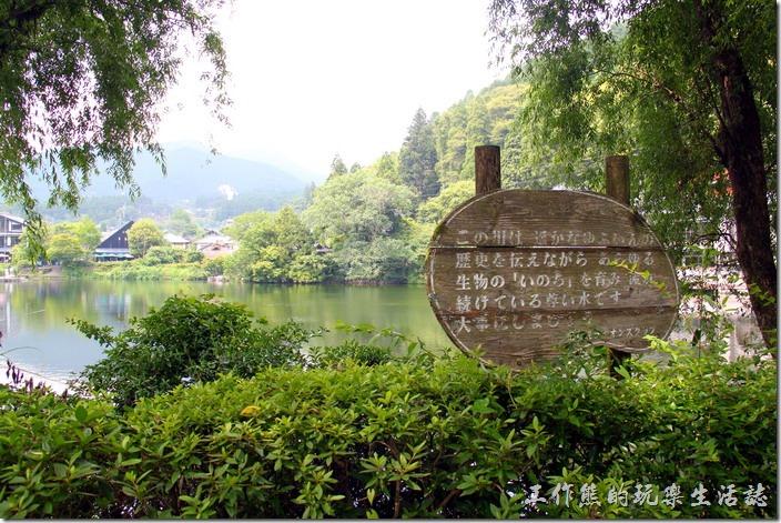 金鱗湖的湖旁有著許多的看板說明。