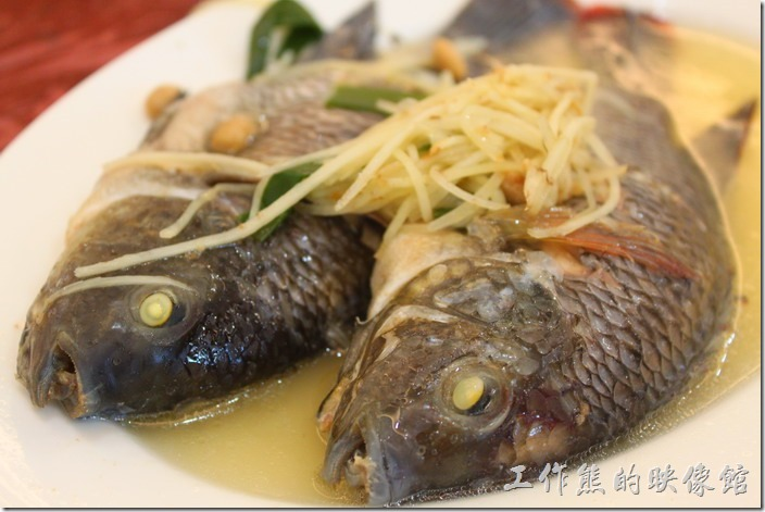 鹹水吳郭魚蒸豆醬,這吳郭魚比想像中的還有大尾,魚鱗及部份內臟已經去除掉了,所以可以很舒服的吃魚,不用擔心其他的部位壞了口味,建議要沾湯汁食用,魚肉會比較鮮甜。