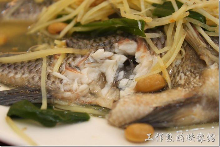 台南-土城海產店。這就是鹹水吳郭魚的肉質,幾乎吹彈可破的魚肉,筷子輕輕的夾上去就可以把魚肉夾下來,肉質則相當甜美。