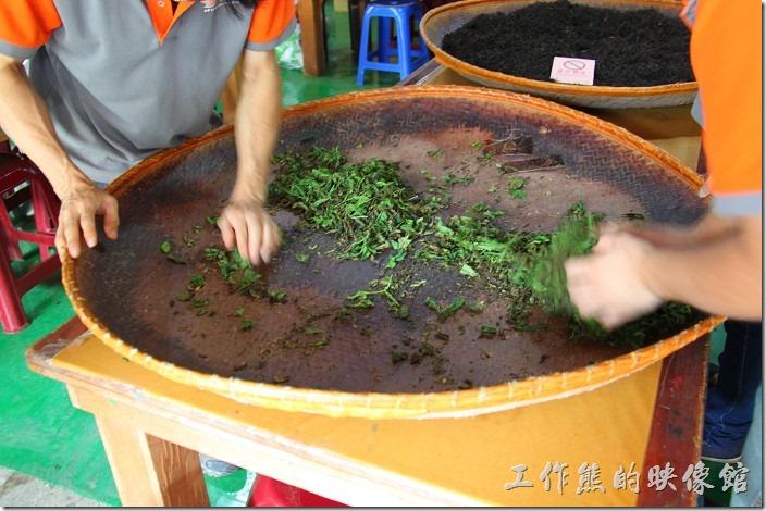 台中日月潭-和菓森林揉茶。紅茶(應該是所有的茶葉)一開始不是我們看到的黑色茶葉,而是綠色的,現在正在作揉捻的動作。揉捻的目的使茶葉緊結成條狀,外型美觀,另外揉捻時茶葉之細胞壁會被壓破,茶汁釋出,與空氣接觸,起氧化作用,使葉中所含之單寧,藉氧化酵素為觸煤,發生氧化作用。