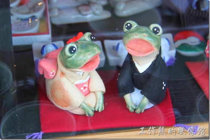 日本北九州-由布院街道。櫥窗內的一對新婚青蛙。