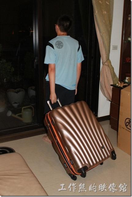 Rowana旅行箱。金色的貝殼系列旅行箱