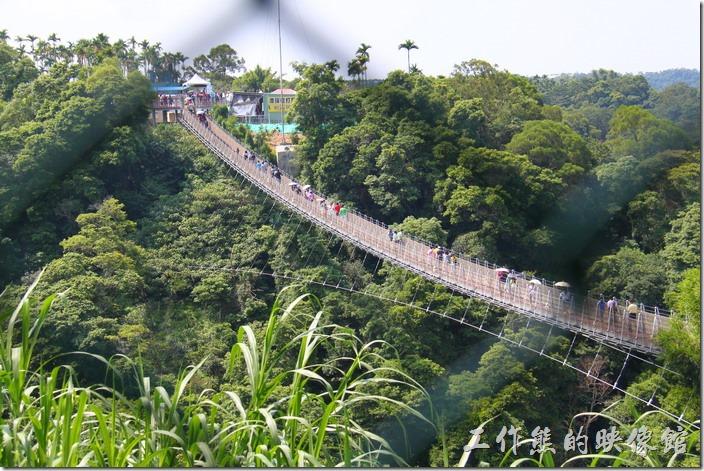 南投-天空之橋。從休息區就可以透過鐵絲網看到天空之橋的搖曳風姿。
