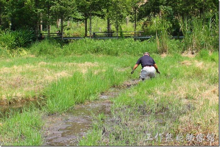 南投頭社活盆地。這老兄不信邪,偏偏要走出自己的路,已經身陷泥沼中不能自拔了!最後弄得全身三分之二都是泥巴,不過高興就好。