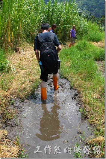 南投頭社活盆地。看到這樣現在泥巴水裏的狀況,知道為何要穿長筒雨鞋了吧!