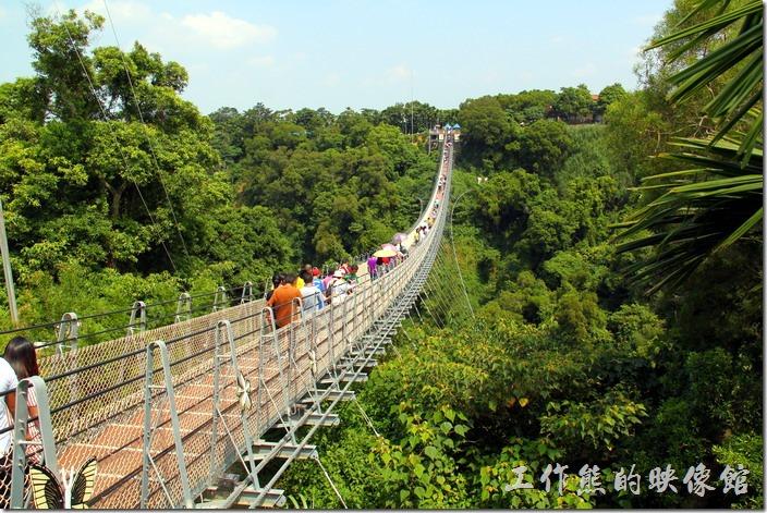 南投-天空之橋。南投的「天空之橋」全長為204公尺,階梯共265階,兩端高低落差有5.65公尺。