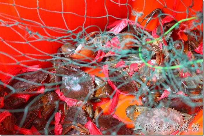 台南-阿美深海鮮魚湯。旁邊的桶子內有活跳跳的紅蟳極處女蟳可以挑選。