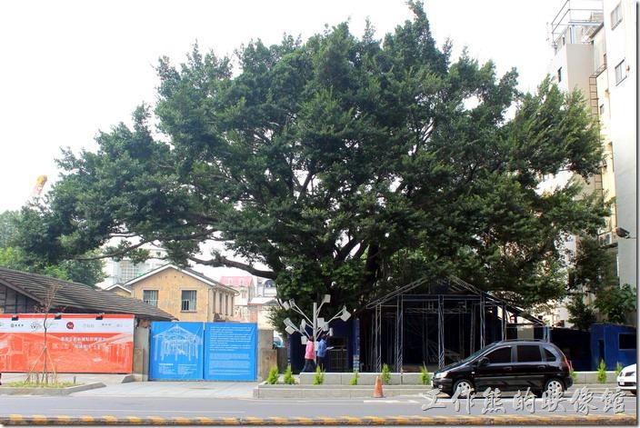 台南-西門路上司法宿舍群的藍晒圖2.0。西門路上重生的「藍晒圖」座落在原「司法宿舍」群,在一棵大樹的下面。