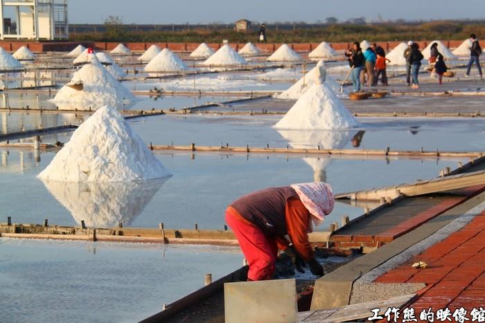 井仔腳瓦盤鹽田這裡有成堆的粗鹽,雖然不像七股鹽山那麼壯觀,但是一小堆一小堆的反而別有一番風味。