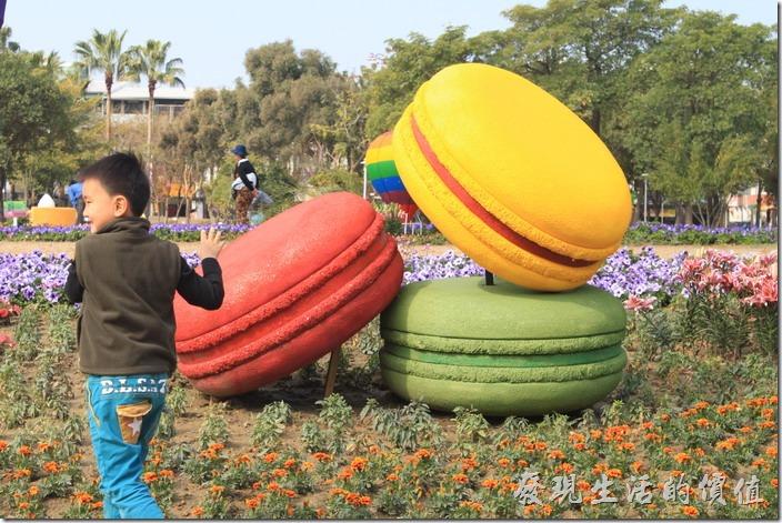 台南-2015百花祭。好大的馬卡龍甜點,看每個遊客都很想咬一口。