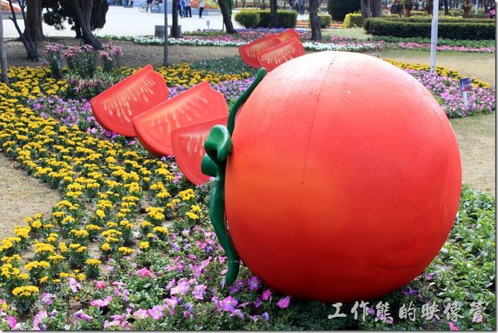 台南-2015百花祭。牛蕃茄切盤。體驗古早味的蕃茄沾盤盛裝在花海之中,酸甜滋味勾起心頭的回憶。