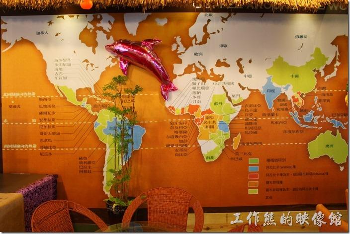 全球咖啡分佈圖。