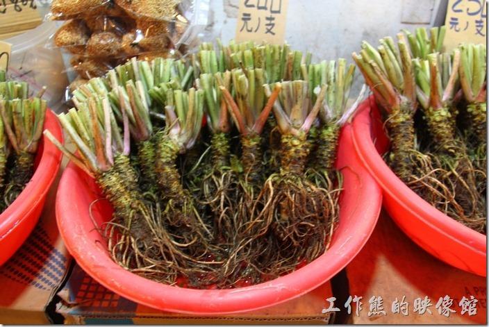 嘉義-奮起湖。知道這是什麼嗎?這個就使鼎鼎有名的「山葵」,不知道「山葵」是什麼,這是日本人的最愛,也是吃生魚片一定要用到的佐料,當它被磨成粉的時候就成了「芥末(哇沙米)」啦!