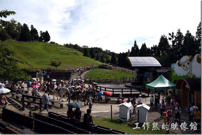南投-青青草原。綿羊秀的表演即將開始了,人潮也越聚越多,有點超乎平常的多,因為現在很多國外的觀光客也都上清境了。