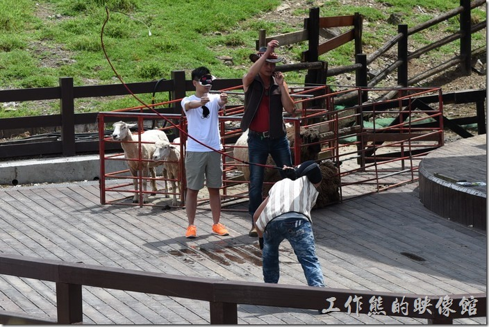 南投-青青草原。這位香港來的遊客還不知道自己剛剛經歷了皮開肉綻的危險,氣球都已經擊破了還杵在那裡。