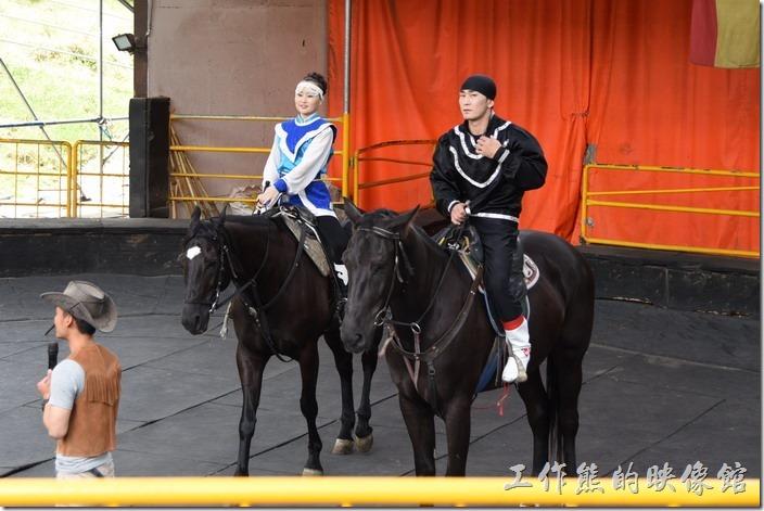 南投-青青草原。馬術表演的團長,有家族中最長者擔任,先來一個下馬威,把馬騎上圍欄像觀眾們致意。
