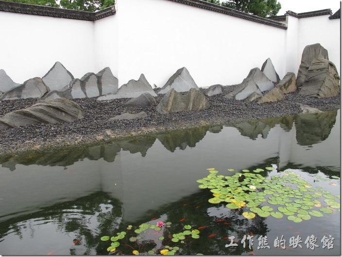 蘇州博物館。其實大部份進到博物館的人,大多會來到這個庭園欣賞其假山假水,貝聿銘設計這個博物館時巧妙的運用了白色的牆璧遮掩了後面的建築,並運用石塊來做成假山,加上池水的倒影與假山及山牆相映成趣。