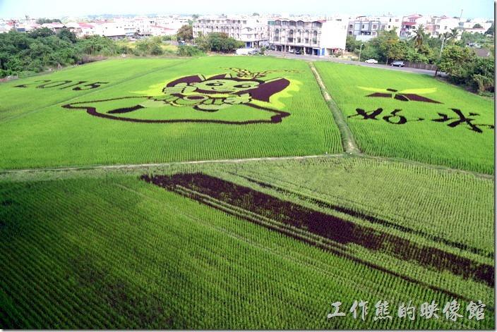 2015年後壁區農會的彩繪稻田除了三太子的圖案外,左手邊還有【2015】,右手邊則有【好米】的字樣。