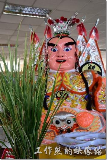 台南後壁農會彩繪稻米11