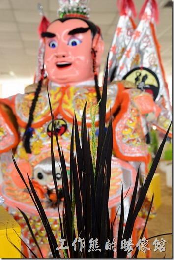 台南後壁農會彩繪稻米12