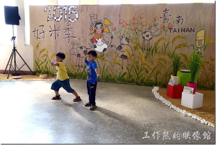 台南後壁農會彩繪稻米15