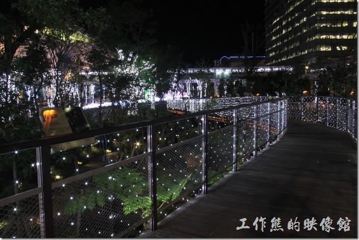 南港-中國信託聖誕裝飾。其實平常這個小公園使許多人散步的地方,也有一些蕨類的種植與簡介,有機會可以來走走看看。