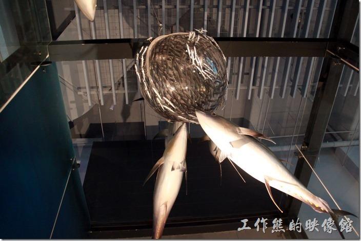 基隆-海洋科技博物館29