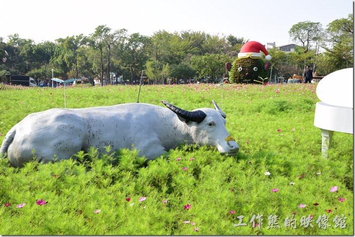 台南-2016百花祭-水萍溫公園。春耕花開,以牛魔王(水牛)為意念發想,不過有點牽強就是了。