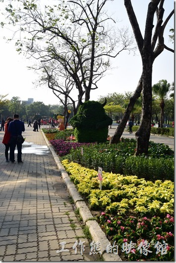 台南-2016百花祭-水萍溫公園33
