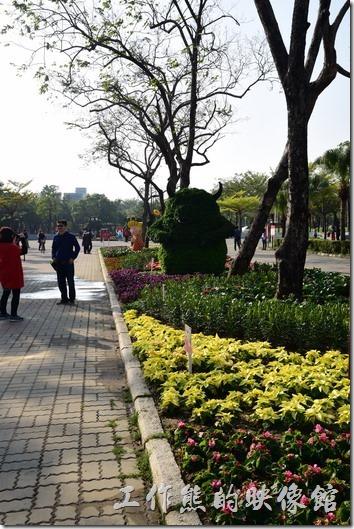 台南-2016百花祭-水萍溫公園34